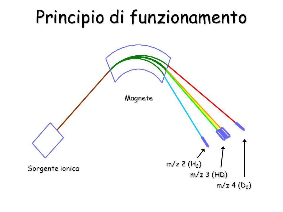 Principio di funzionamento Sorgente ionica Magnete m/z 2 (H 2 ) m/z 3 (HD) m/z 4 (D 2 )