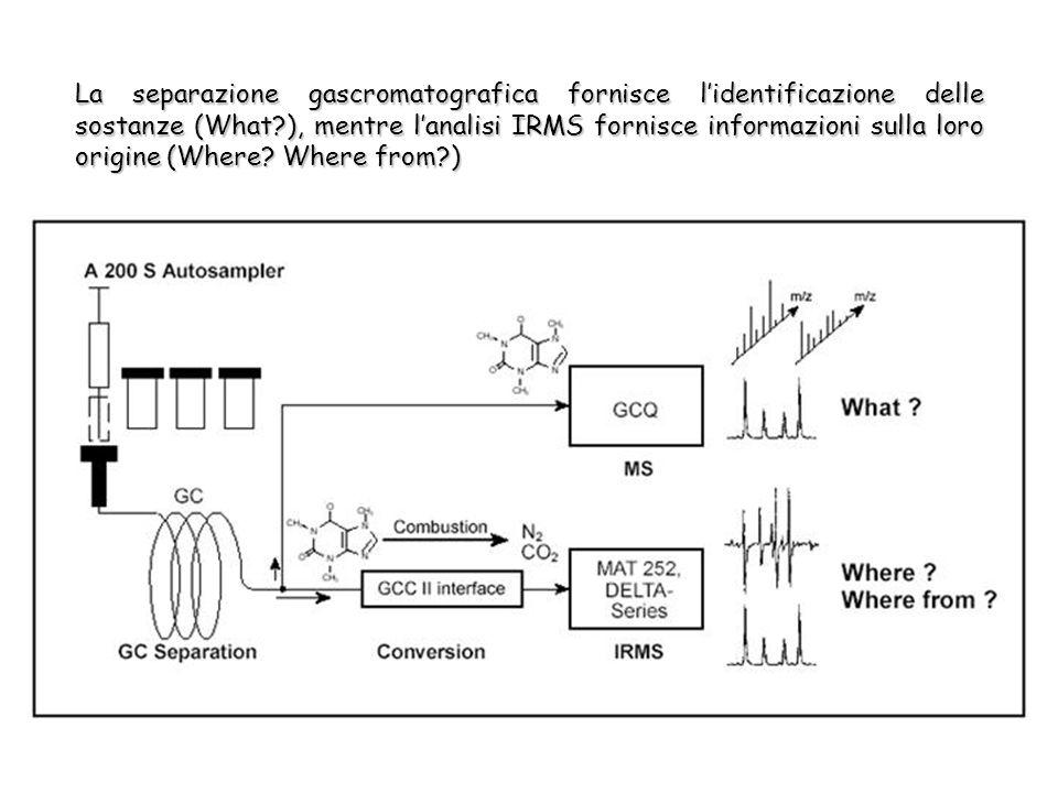 La separazione gascromatografica fornisce lidentificazione delle sostanze (What ), mentre lanalisi IRMS fornisce informazioni sulla loro origine (Where.