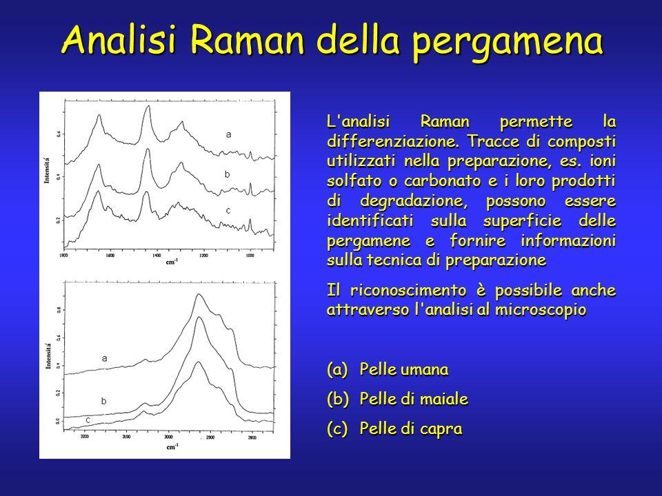 L analisi Raman permette la differenziazione. Tracce di composti utilizzati nella preparazione, es.