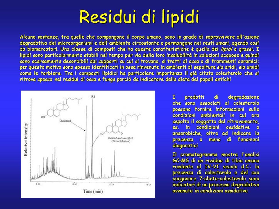 I prodotti di degradazione che sono associati al colesterolo possono fornire informazioni sulle condizioni ambientali in cui era sepolto il soggetto del ritrovamento, es.