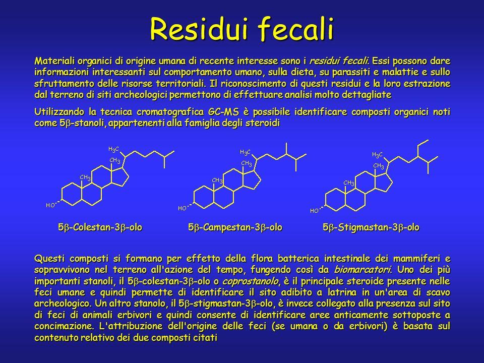 Materiali organici di origine umana di recente interesse sono i residui fecali.