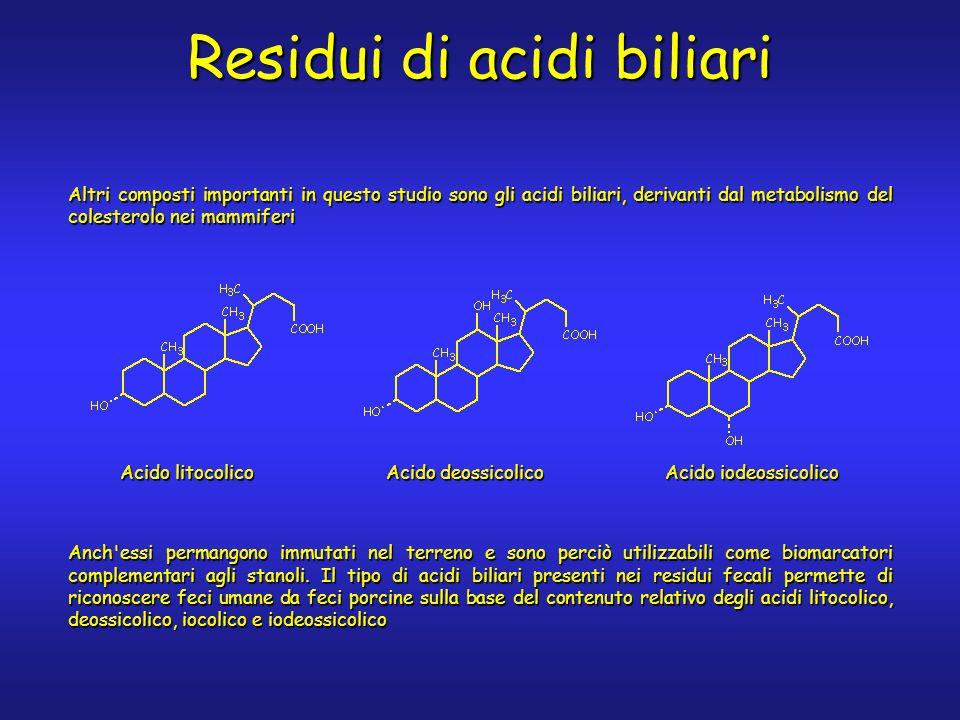 Altri composti importanti in questo studio sono gli acidi biliari, derivanti dal metabolismo del colesterolo nei mammiferi Anch essi permangono immutati nel terreno e sono perciò utilizzabili come biomarcatori complementari agli stanoli.