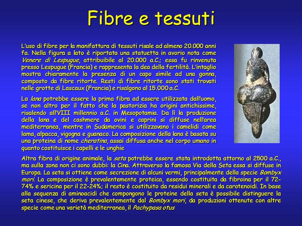 Luso di fibre per la manifattura di tessuti risale ad almeno 20.000 anni fa.