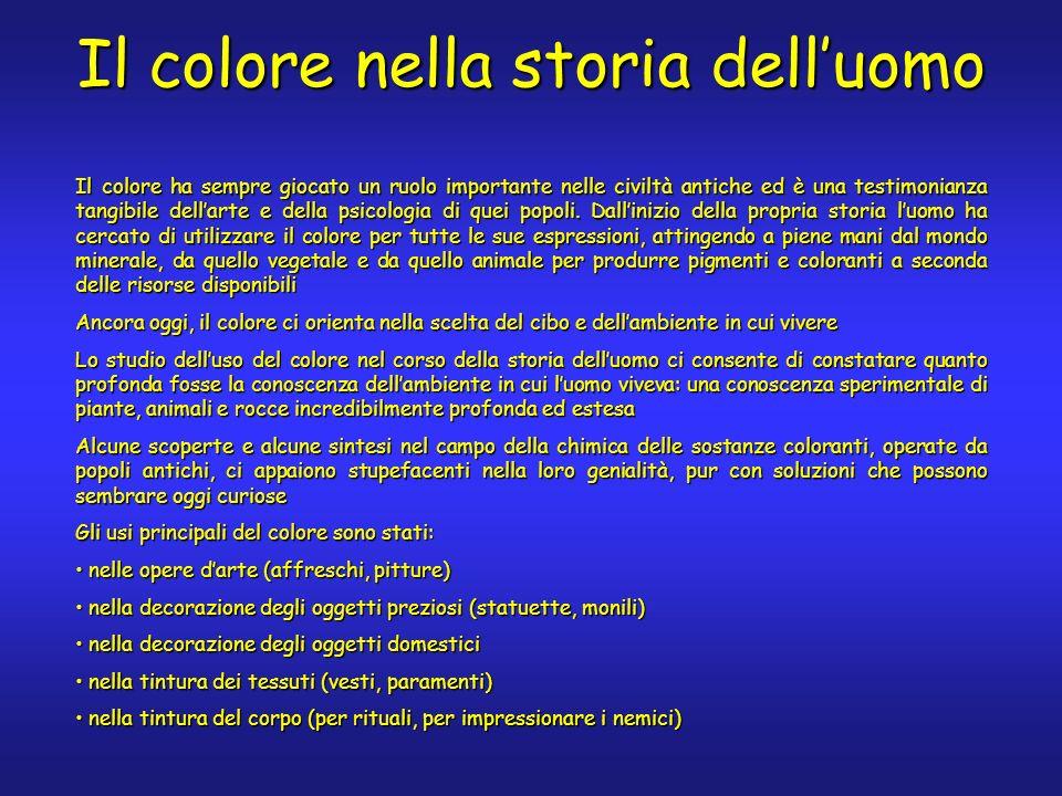 Il colore nella storia delluomo Il colore ha sempre giocato un ruolo importante nelle civiltà antiche ed è una testimonianza tangibile dellarte e della psicologia di quei popoli.