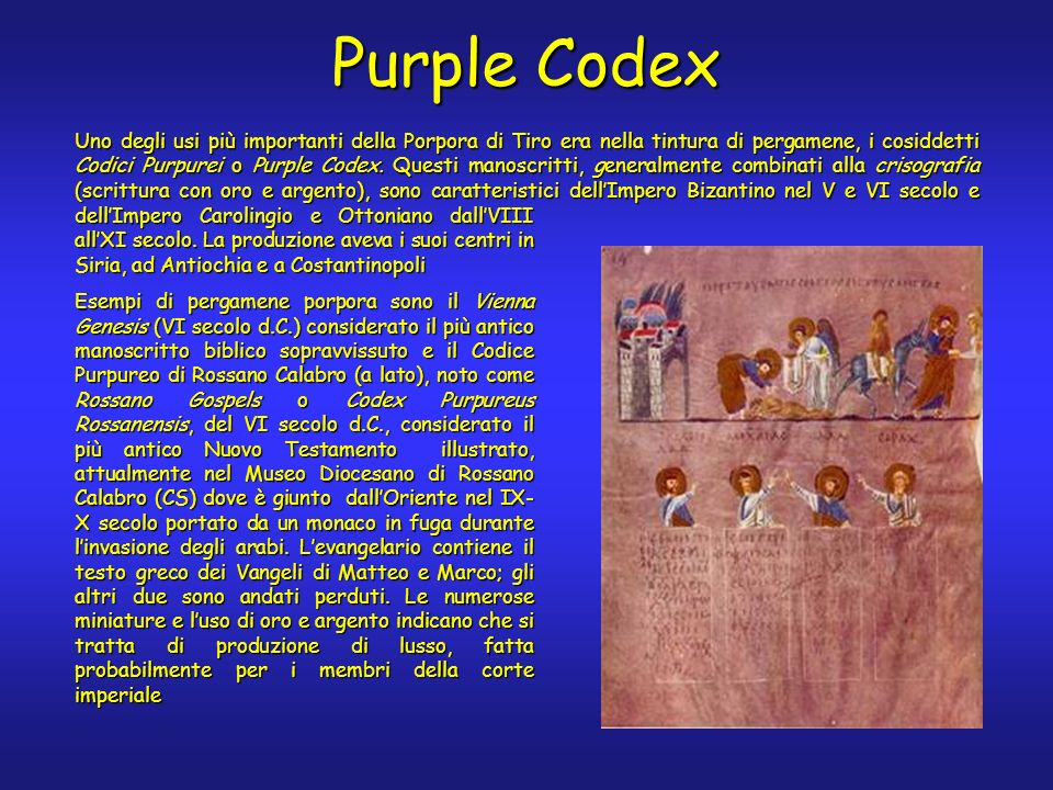Purple Codex dellImpero Carolingio e Ottoniano dallVIII allXI secolo.