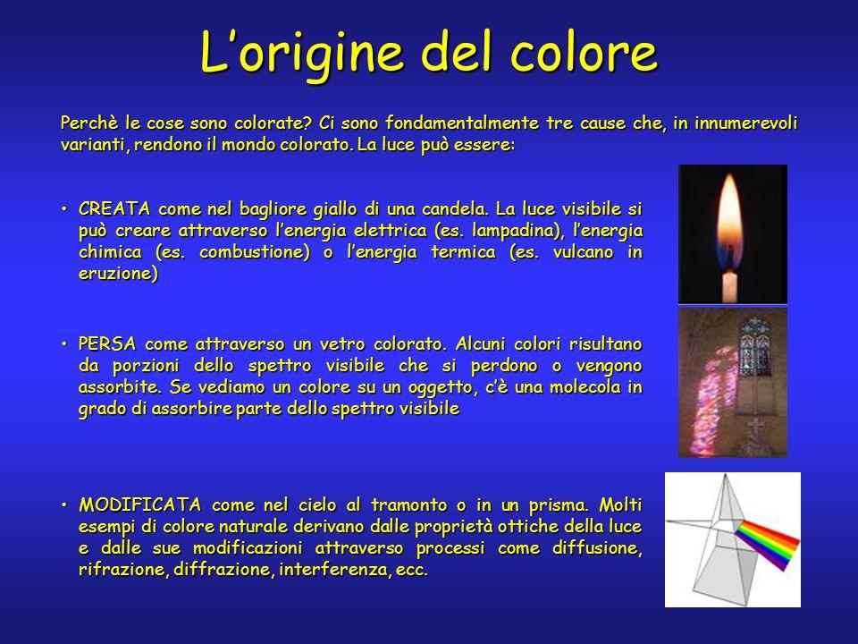 Lorigine del colore Perchè le cose sono colorate.