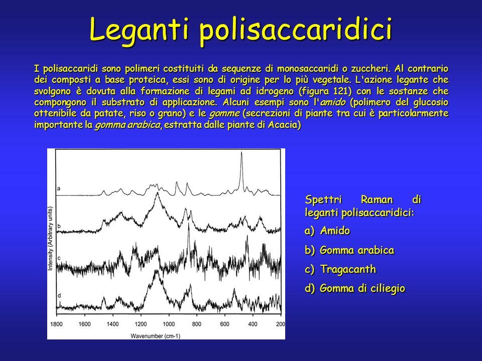 Leganti polisaccaridici I polisaccaridi sono polimeri costituiti da sequenze di monosaccaridi o zuccheri.