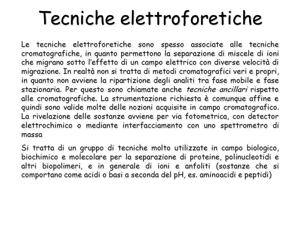Tecniche elettroforetiche Le tecniche elettroforetiche sono spesso associate alle tecniche cromatografiche, in quanto permettono la separazione di mis