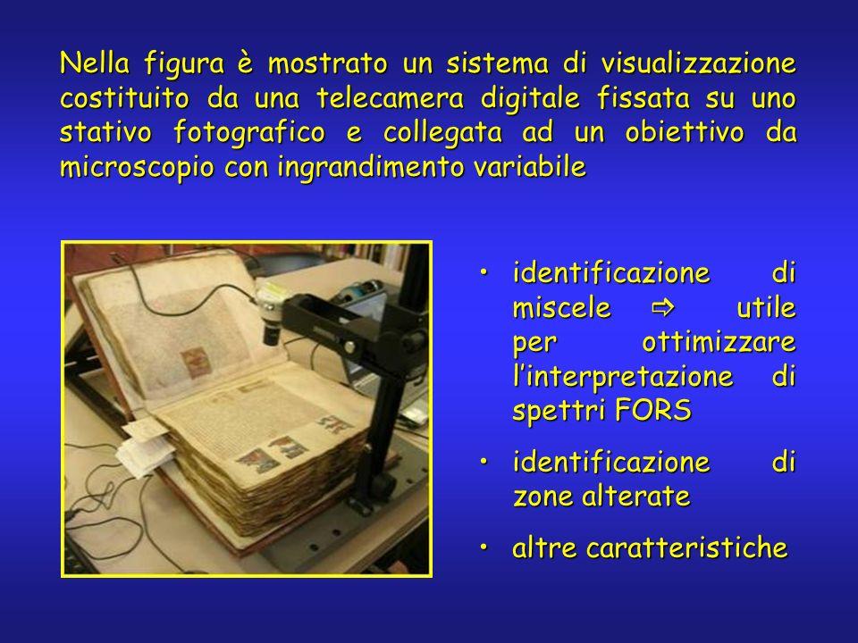 Nella figura è mostrato un sistema di visualizzazione costituito da una telecamera digitale fissata su uno stativo fotografico e collegata ad un obiet
