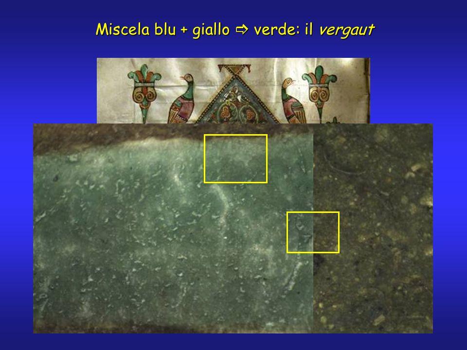 Miscela blu + giallo verde: il vergaut