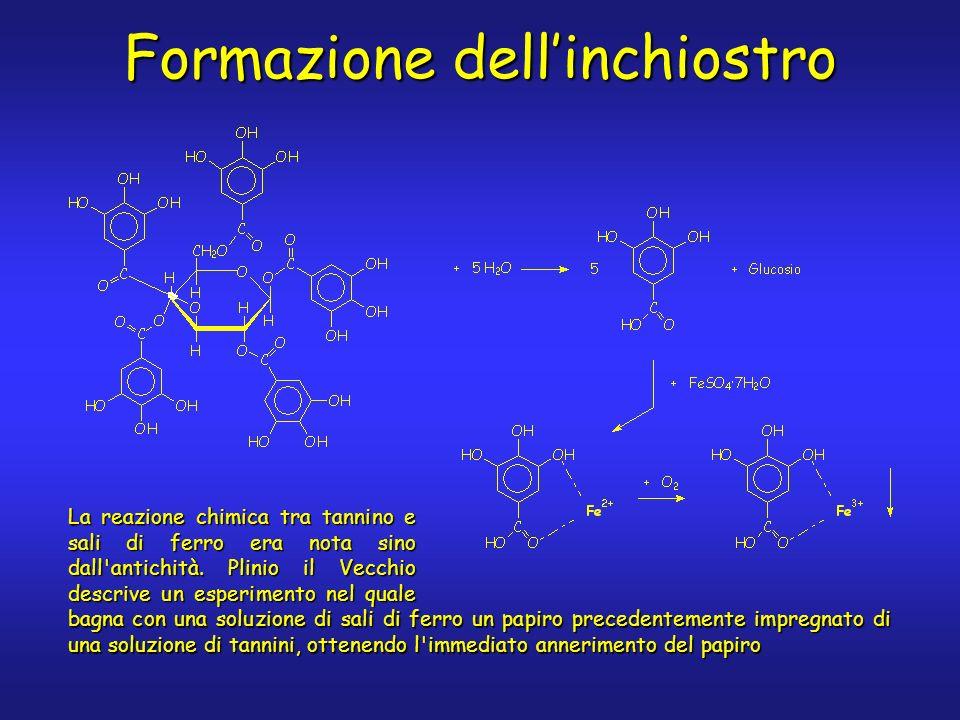 Formazione dellinchiostro La reazione chimica tra tannino e sali di ferro era nota sino dall'antichità. Plinio il Vecchio descrive un esperimento nel