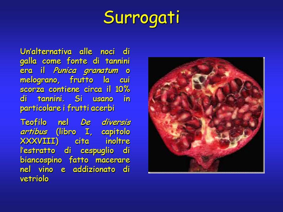 Surrogati Unalternativa alle noci di galla come fonte di tannini era il Punica granatum o melograno, frutto la cui scorza contiene circa il 10% di tan