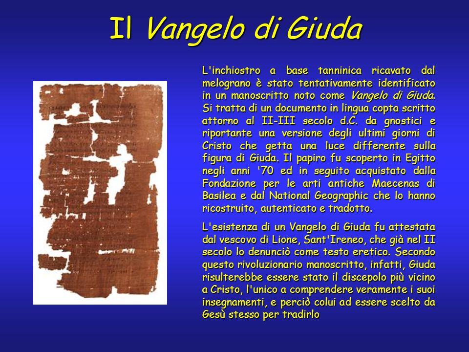 Il Vangelo di Giuda L'inchiostro a base tanninica ricavato dal melograno è stato tentativamente identificato in un manoscritto noto come Vangelo di Gi