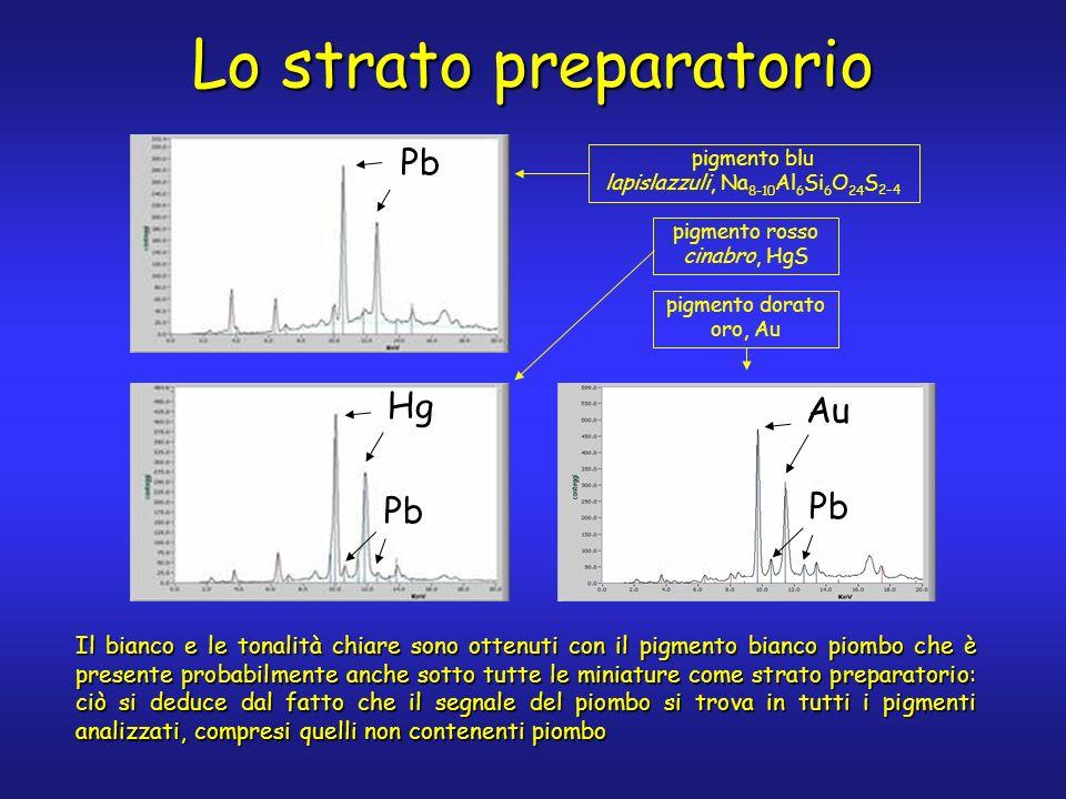 Pb Hg Pb Au Pb pigmento blu lapislazzuli, Na 8-10 Al 6 Si 6 O 24 S 2-4 pigmento rosso cinabro, HgS pigmento dorato oro, Au Lo strato preparatorio Il bianco e le tonalità chiare sono ottenuti con il pigmento bianco piombo che è presente probabilmente anche sotto tutte le miniature come strato preparatorio: ciò si deduce dal fatto che il segnale del piombo si trova in tutti i pigmenti analizzati, compresi quelli non contenenti piombo