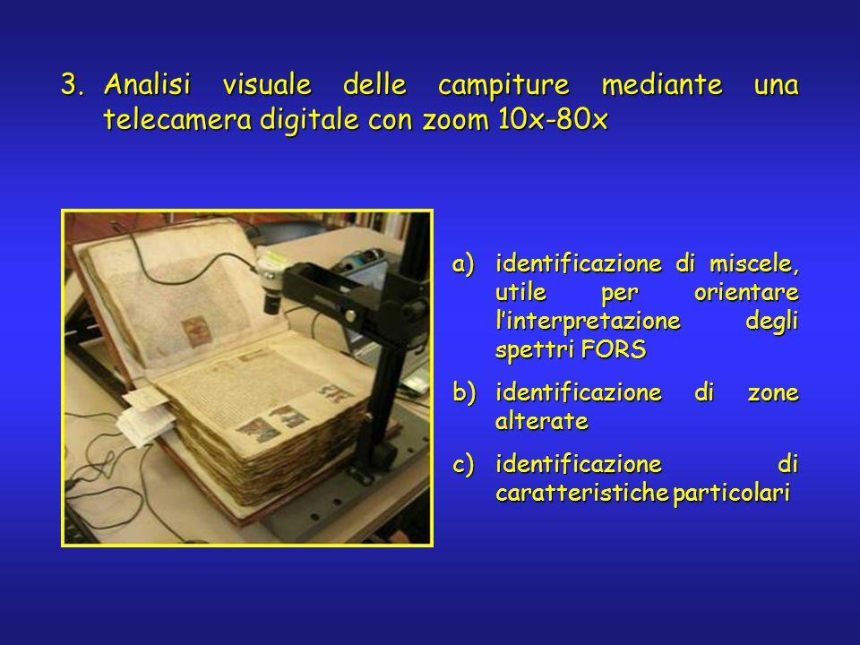 3.Analisi visuale delle campiture mediante una telecamera digitale con zoom 10x-80x a)identificazione di miscele, utile per orientare linterpretazione degli spettri FORS b)identificazione di zone alterate c)identificazione di caratteristiche particolari