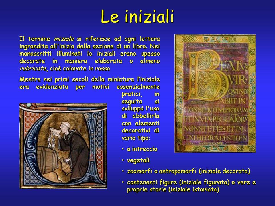 Le iniziali Il termine iniziale si riferisce ad ogni lettera ingrandita all'inizio della sezione di un libro. Nei manoscritti illuminati le iniziali e