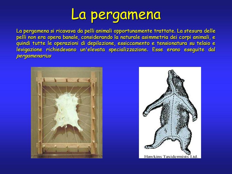 La pergamena La pergamena si ricavava da pelli animali opportunamente trattate. La stesura delle pelli non era opera banale, considerando la naturale