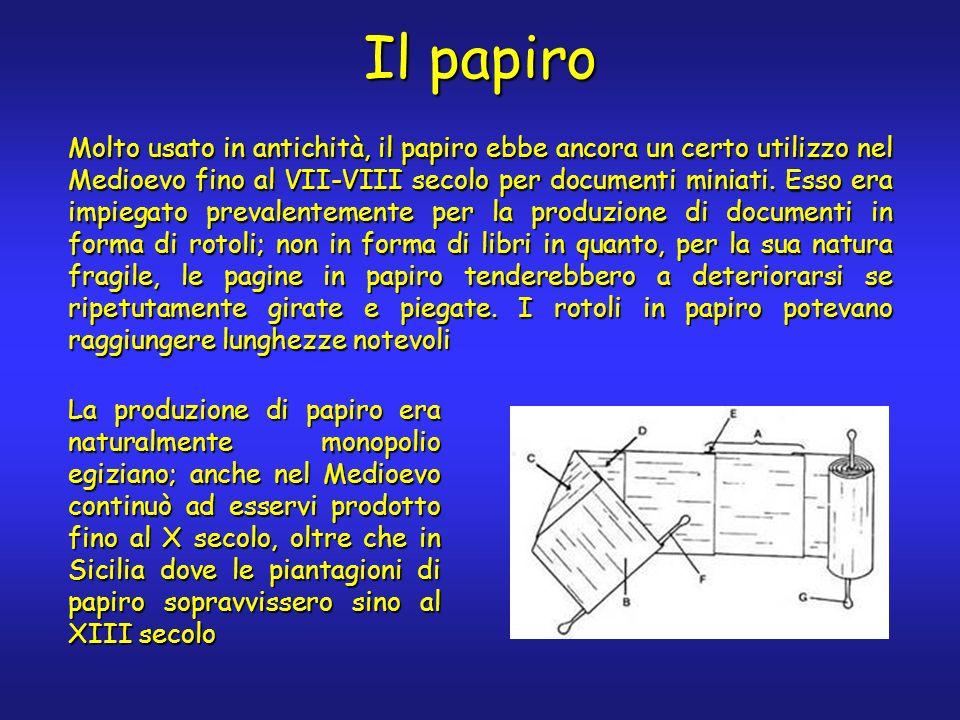Il papiro Molto usato in antichità, il papiro ebbe ancora un certo utilizzo nel Medioevo fino al VII-VIII secolo per documenti miniati. Esso era impie