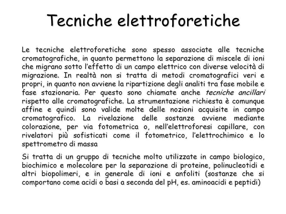 Tecniche elettroforetiche Le tecniche elettroforetiche sono spesso associate alle tecniche cromatografiche, in quanto permettono la separazione di miscele di ioni che migrano sotto leffetto di un campo elettrico con diverse velocità di migrazione.