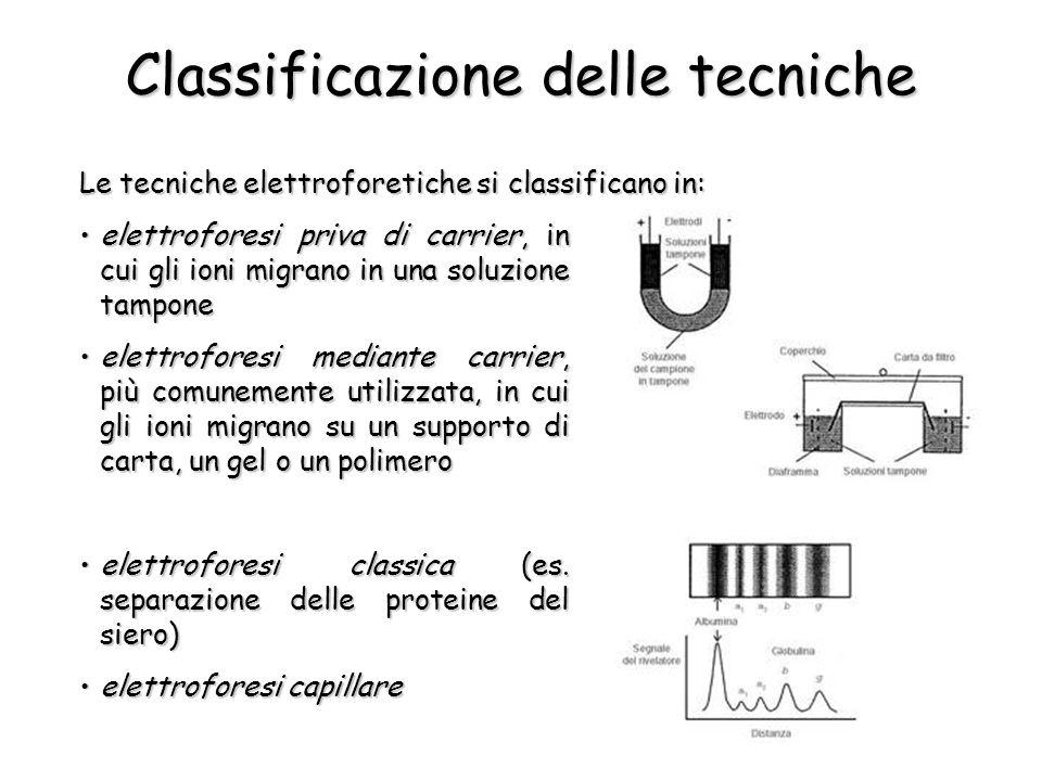 Classificazione delle tecniche Le tecniche elettroforetiche si classificano in: elettroforesi priva di carrier, in cui gli ioni migrano in una soluzione tamponeelettroforesi priva di carrier, in cui gli ioni migrano in una soluzione tampone elettroforesi mediante carrier, più comunemente utilizzata, in cui gli ioni migrano su un supporto di carta, un gel o un polimeroelettroforesi mediante carrier, più comunemente utilizzata, in cui gli ioni migrano su un supporto di carta, un gel o un polimero elettroforesi classica (es.