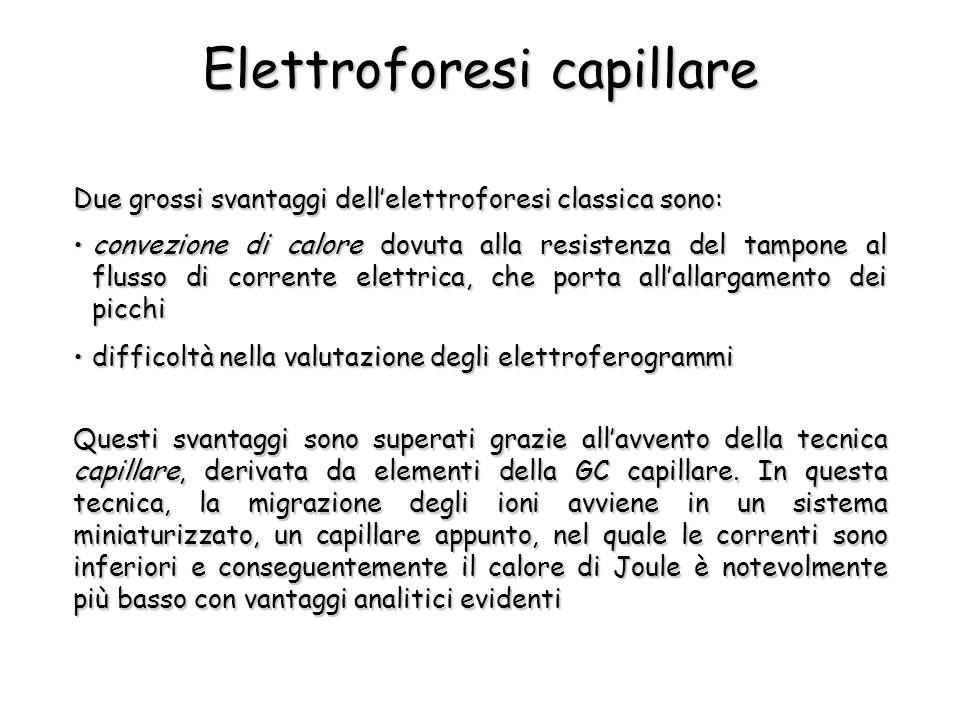 Elettroforesi capillare Due grossi svantaggi dellelettroforesi classica sono: Questi svantaggi sono superati grazie allavvento della tecnica capillare, derivata da elementi della GC capillare.
