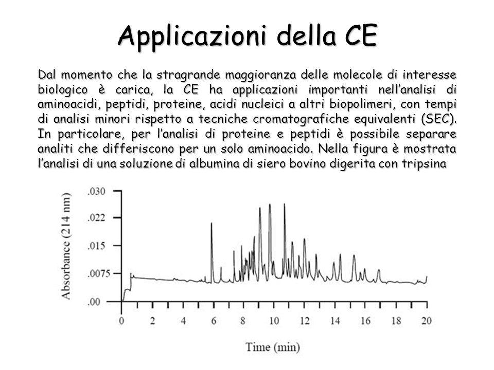 Applicazioni della CE Dal momento che la stragrande maggioranza delle molecole di interesse biologico è carica, la CE ha applicazioni importanti nellanalisi di aminoacidi, peptidi, proteine, acidi nucleici a altri biopolimeri, con tempi di analisi minori rispetto a tecniche cromatografiche equivalenti (SEC).