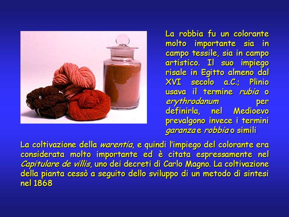 La robbia fu un colorante molto importante sia in campo tessile, sia in campo artistico. Il suo impiego risale in Egitto almeno dal XVI secolo a.C.; P