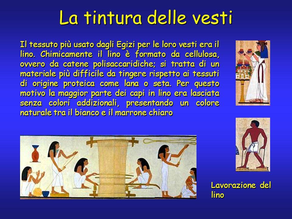 La tintura delle vesti Il tessuto più usato dagli Egizi per le loro vesti era il lino. Chimicamente il lino è formato da cellulosa, ovvero da catene p