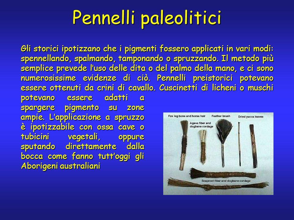 Pennelli paleolitici Gli storici ipotizzano che i pigmenti fossero applicati in vari modi: spennellando, spalmando, tamponando o spruzzando.