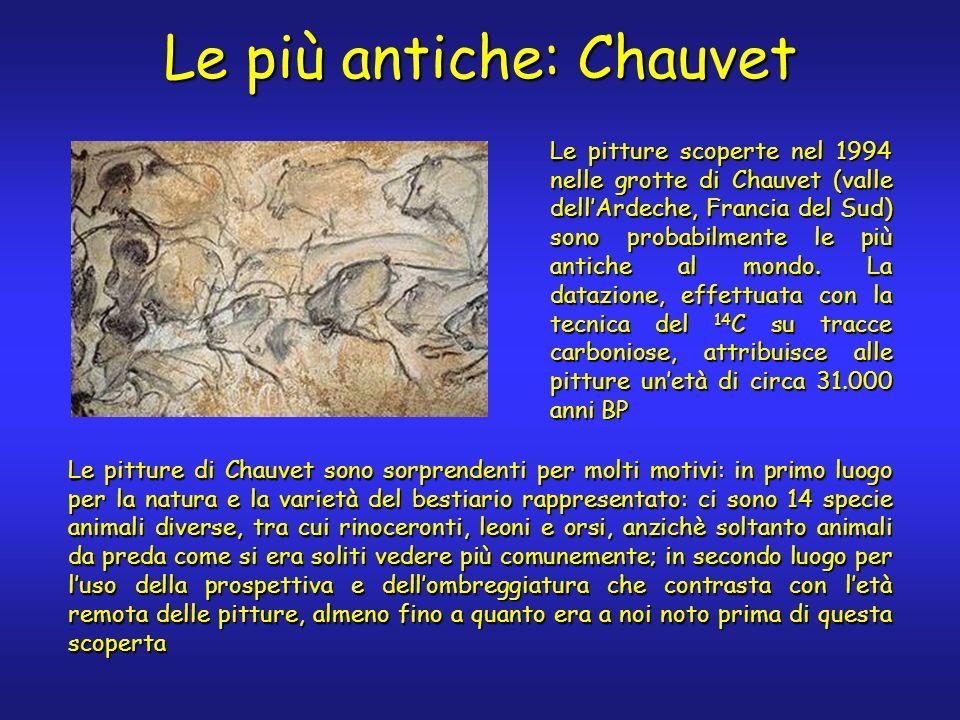 Le più antiche: Chauvet Le pitture di Chauvet sono sorprendenti per molti motivi: in primo luogo per la natura e la varietà del bestiario rappresentat