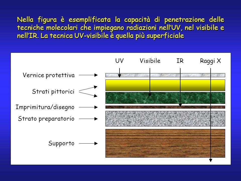 Nella figura è esemplificata la capacità di penetrazione delle tecniche molecolari che impiegano radiazioni nellUV, nel visibile e nellIR. La tecnica
