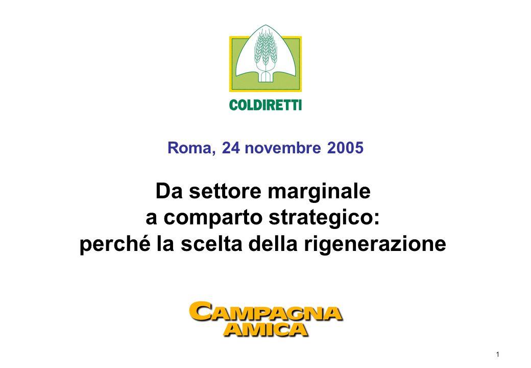 1 Roma, 24 novembre 2005 Da settore marginale a comparto strategico: perché la scelta della rigenerazione