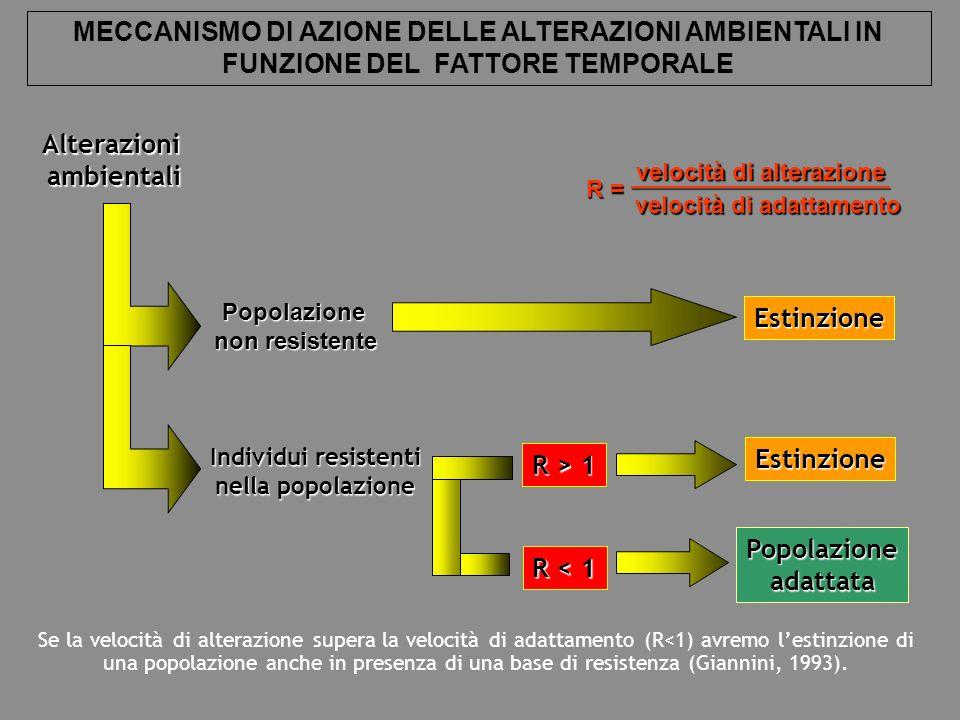 Alterazioniambientali Popolazione non resistente Estinzione Popolazioneadattata Individui resistenti nella popolazione R > 1 R < 1 R = _____________________________ velocità di alterazione velocità di adattamento Se la velocità di alterazione supera la velocità di adattamento (R<1) avremo lestinzione di una popolazione anche in presenza di una base di resistenza (Giannini, 1993).