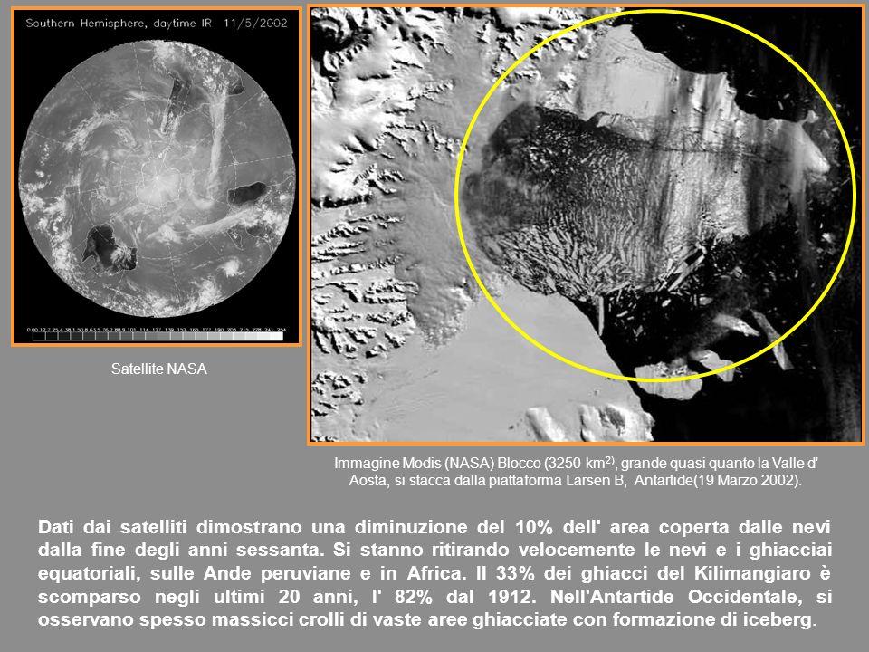 Dati dai satelliti dimostrano una diminuzione del 10% dell area coperta dalle nevi dalla fine degli anni sessanta.
