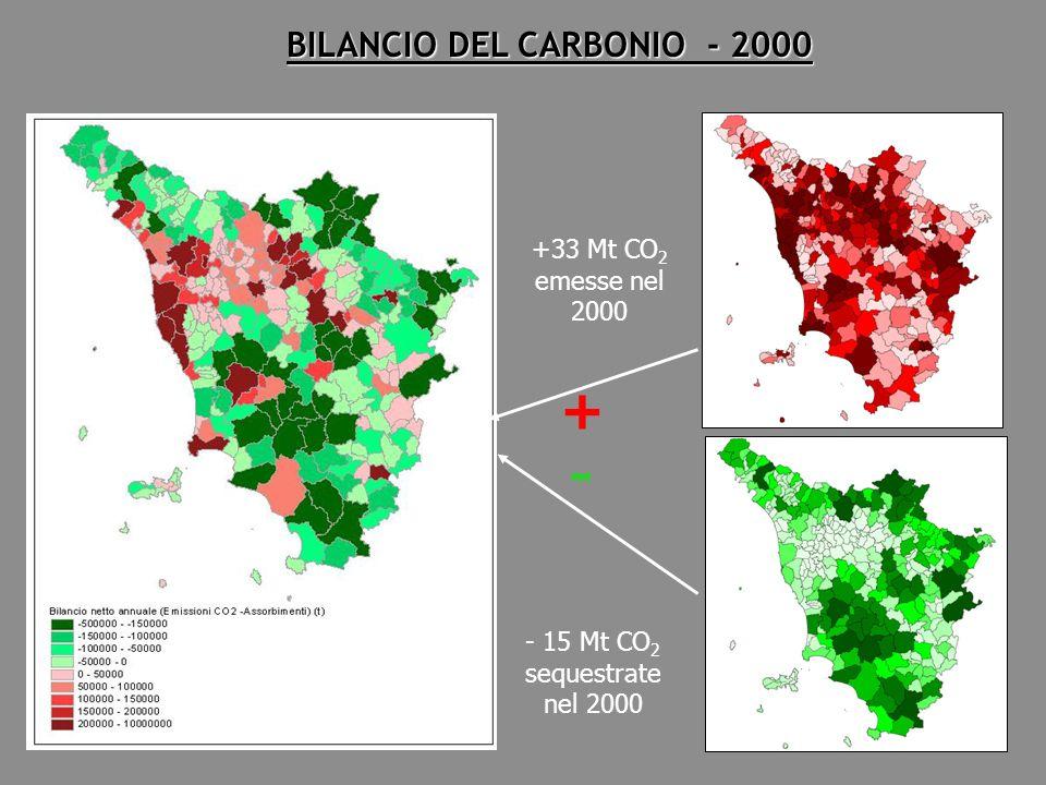 +33 Mt CO 2 emesse nel 2000 BILANCIO DEL CARBONIO - 2000 - 15 Mt CO 2 sequestrate nel 2000 + -
