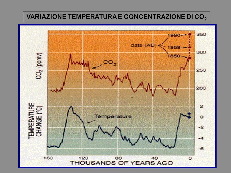 VARIAZIONE TEMPERATURA E CONCENTRAZIONE DI CO 2
