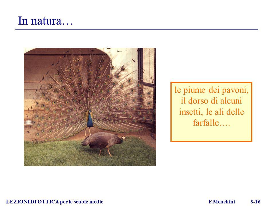 In natura… LEZIONI DI OTTICA per le scuole medie F.Menchini 3-16 le piume dei pavoni, il dorso di alcuni insetti, le ali delle farfalle….
