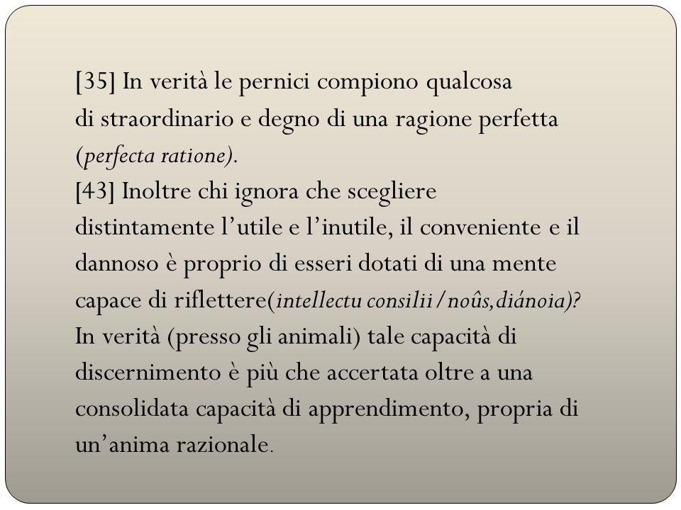 [ 35] In verità le pernici compiono qualcosa di straordinario e degno di una ragione perfetta (perfecta ratione). [43] Inoltre chi ignora che sceglier