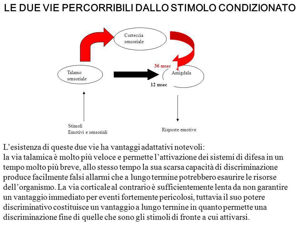LE DUE VIE PERCORRIBILI DALLO STIMOLO CONDIZIONATO Talamo sensoriale Amigdala Corteccia sensoriale Stimoli Emotivi e sensoriali Risposte emotive 12 ms