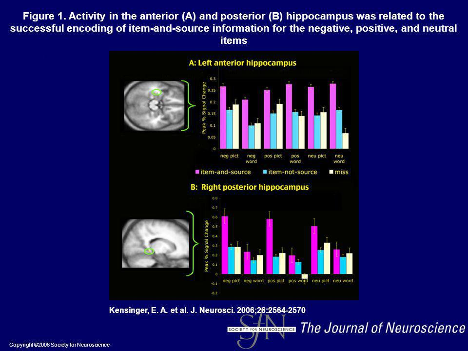 Copyright ©2006 Society for Neuroscience Kensinger, E. A. et al. J. Neurosci. 2006;26:2564-2570 Figure 1. Activity in the anterior (A) and posterior (