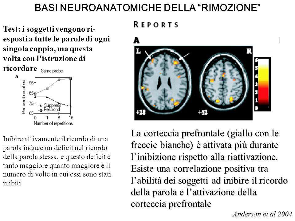 BASI NEUROANATOMICHE DELLA RIMOZIONE Test: i soggetti vengono ri- esposti a tutte le parole di ogni singola coppia, ma questa volta con listruzione di