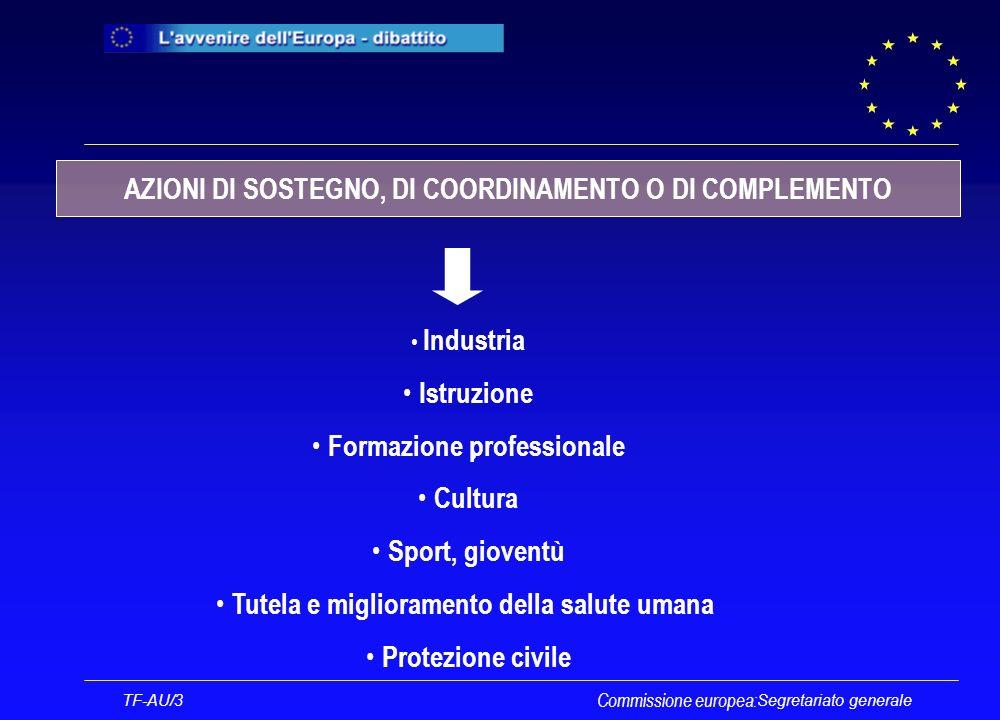 Segretariato generale TF-AU/3 Commissione europea: Industria Istruzione Formazione professionale Cultura Sport, gioventù Tutela e miglioramento della salute umana Protezione civile AZIONI DI SOSTEGNO, DI COORDINAMENTO O DI COMPLEMENTO