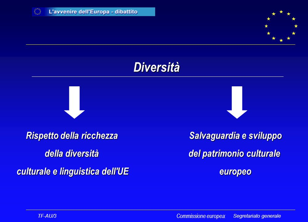 Segretariato generale Diversità TF-AU/3 Commissione europea: Rispetto della ricchezza della diversità culturale e linguistica dell UE Salvaguardia e sviluppo del patrimonio culturale europeo