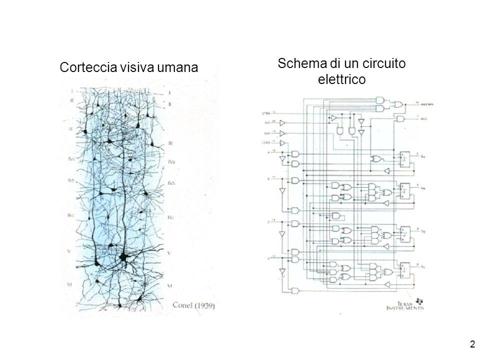 2 Corteccia visiva umana Schema di un circuito elettrico
