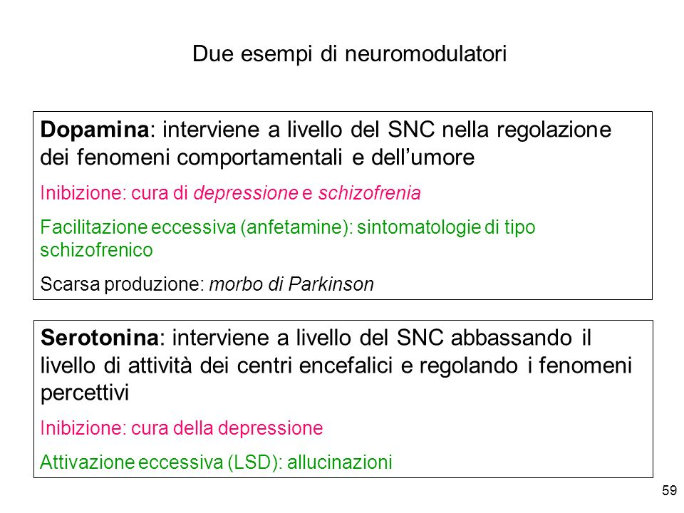59 Dopamina: interviene a livello del SNC nella regolazione dei fenomeni comportamentali e dellumore Inibizione: cura di depressione e schizofrenia Fa