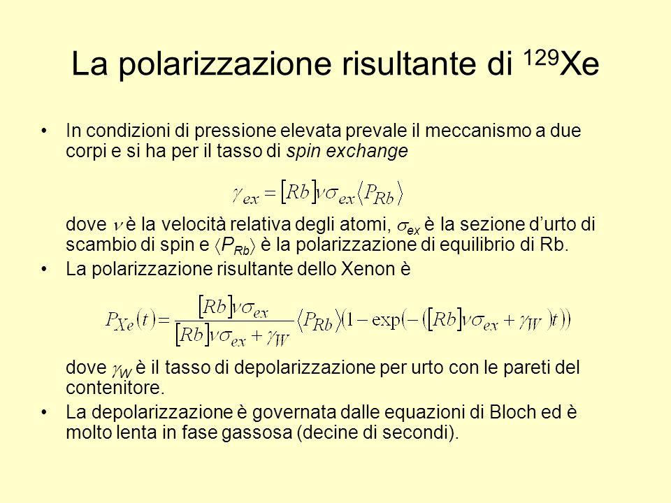 La polarizzazione risultante di 129 Xe In condizioni di pressione elevata prevale il meccanismo a due corpi e si ha per il tasso di spin exchange dove