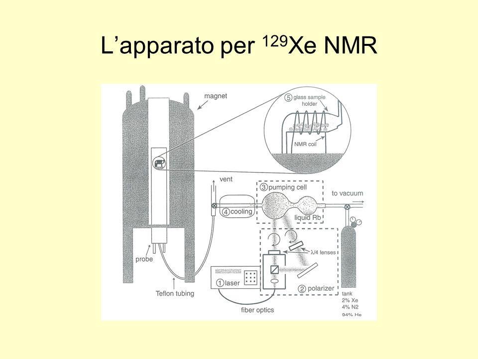 Lapparato per 129 Xe NMR
