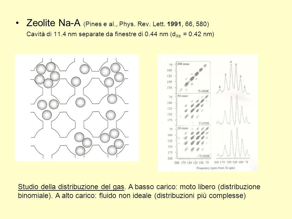 Zeolite Na-A (Pines e al., Phys. Rev. Lett. 1991, 66, 580) Cavità di 11.4 nm separate da finestre di 0.44 nm (d Xe = 0.42 nm) Studio della distribuzio