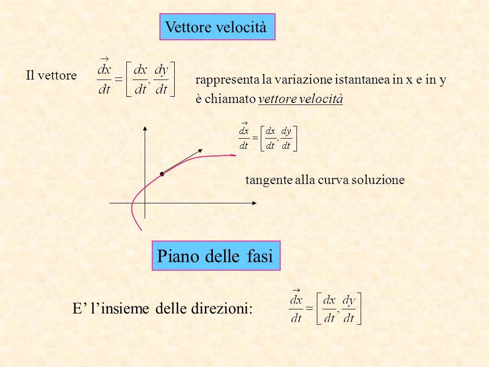 Il vettore rappresenta la variazione istantanea in x e in y Piano delle fasi E linsieme delle direzioni: Vettore velocità tangente alla curva soluzion