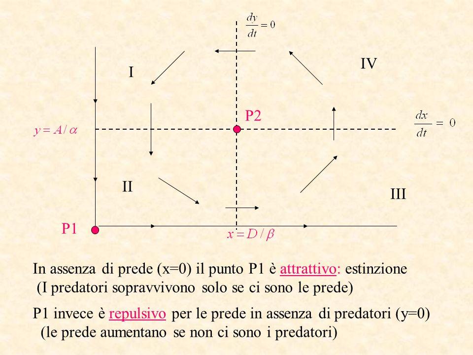 P1 P2 I II III IV In assenza di prede (x=0) il punto P1 è attrattivo: estinzione (I predatori sopravvivono solo se ci sono le prede) P1 invece è repul
